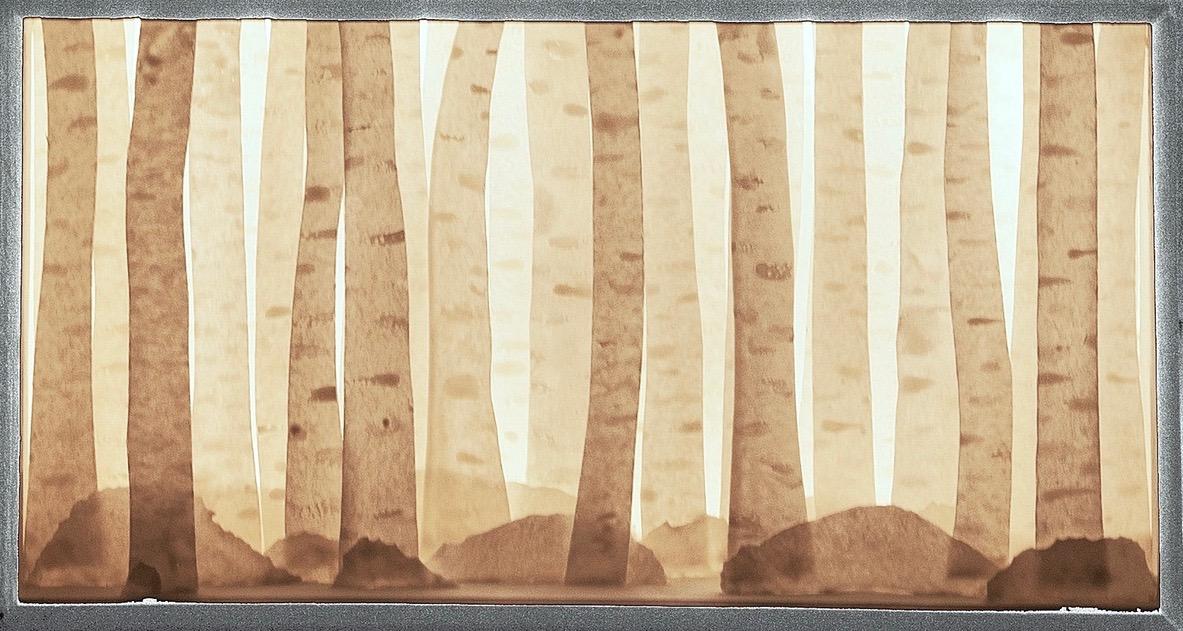 Backlit porcelain birch tree forrest diorama