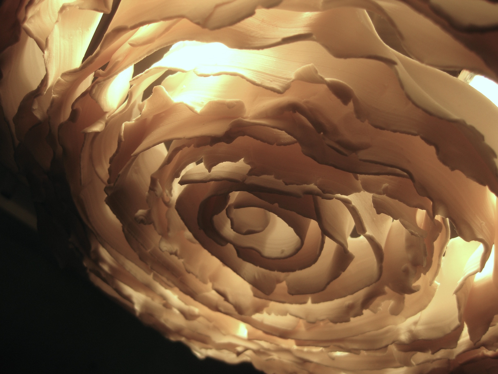 Detail of porcelain abstract rose plafond lamp